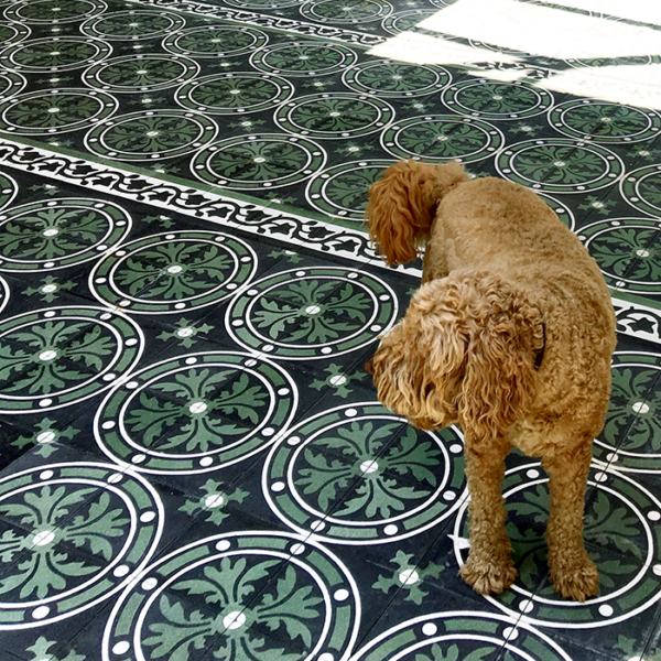 Medusa Encaustic Cement Tile